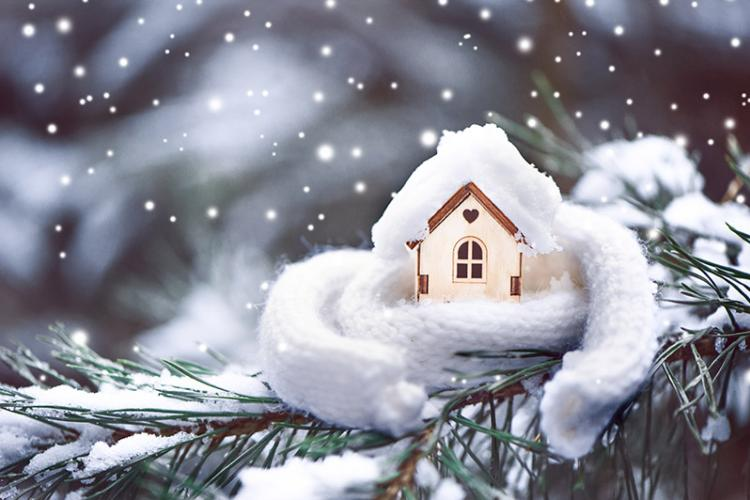 House wrapped in white scarf sitting on Christmas tree branch with snow in the background